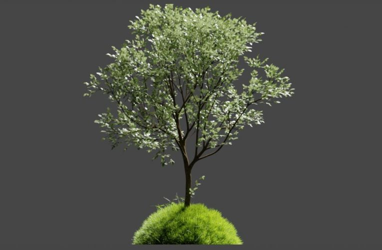 The Grove 9